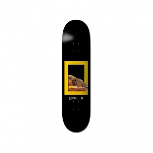 ELEMENT Deck NAT GEO Dragon 8.25